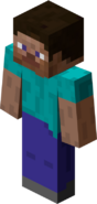 Steve (MC Player skin)