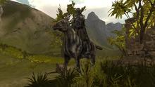 Rycerz konny