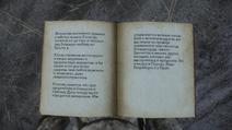 Манускрипт Матея из Янова2