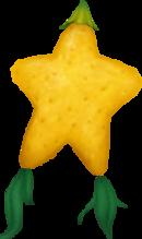 Fruit Paopu