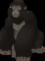 Gorille KH