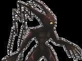 Ombre Nova