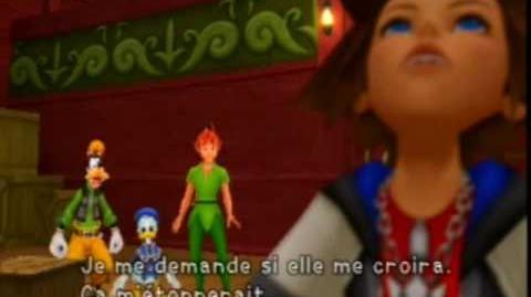 Kingdom Hearts Boss Crochet
