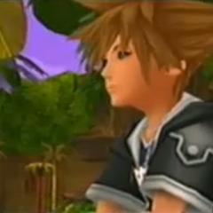 Sora sentado en las palmeras de las <a href=