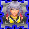 Joueur expert - Riku HD