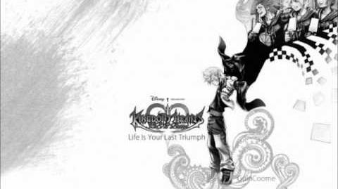 Kingdom Hearts - Sanctuary - After the Battle