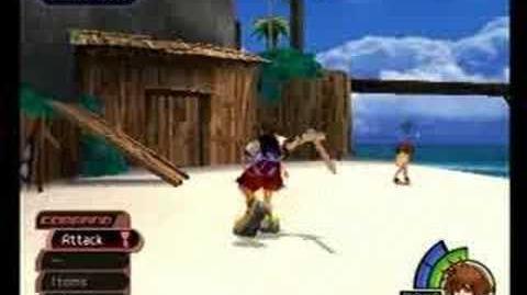 Kingdom Hearts Wakka, Selphie & Tidus