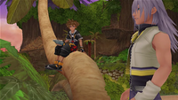 Blank Points Sora y Riku islas