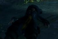 Barbossa Muerto