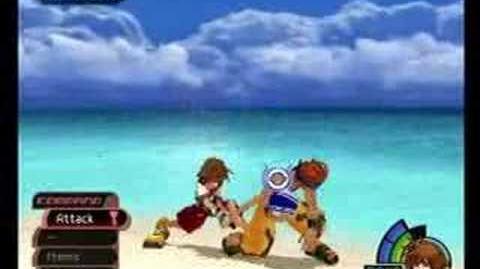 Kingdom Hearts Wakka