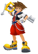 Recoded-sora-victory-pose