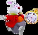 White Rabbit KH