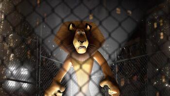 Alex in a cage