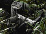 The Big One (Jurassic Park)