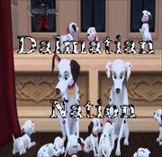 Dalmatians Header