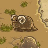 Critter Banta