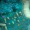 Rockhenge Thumbnail
