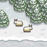 Critter Goat