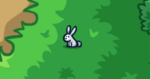 Scn2 Bunny