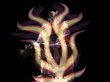 Divine Shell