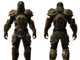 Survivor's Armor Set