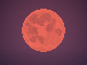 Blood Moon h