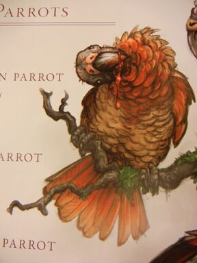 Red Carrion Parrot   King Kong Wiki   FANDOM powered by Wikia