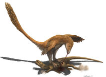 Deinonychus (Raptor Prey Restraint)