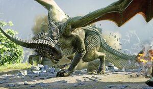 Dragon in Erysia