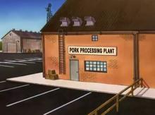 Prok PLant