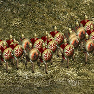 Hoplitai haploi