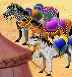 HorseKQ5