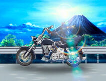 Kevin Bike