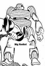BigRadial