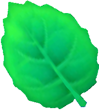 Mint Leaf (international)