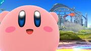 SSB - Kirby-2