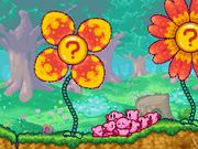 Spinwheel Flower