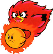 Coo Feuerball
