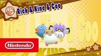 DLC de Kirby Star Allies - Rick & Ken & Coo (Nintendo Switch)