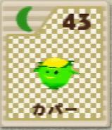 64-card-43