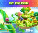 Fine Fields