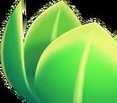 Leafan
