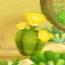 Wii-flower-02-yellow