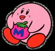 KA Maxim Tomato