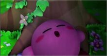 Kirby Dort