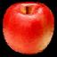 KAR Food Apple