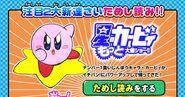 Kirby kawakami2b