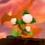 Wii-flower-07-c-1
