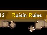 Raisin Ruins