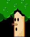 Whispy Woods KA